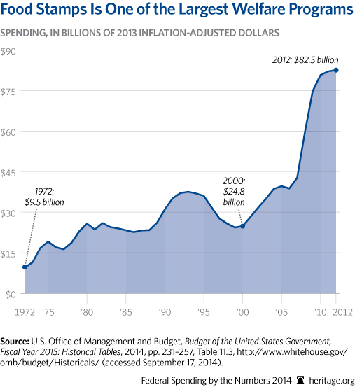 CP-Federal-Spending-by-the-Numbers-2014-08-1-anti-poverty_507.jpg