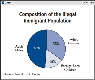 Composition of the Illegal Immigrant Population